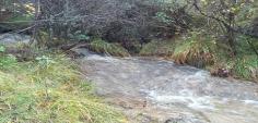 Ruscello boschi Tavernole Sul Mella